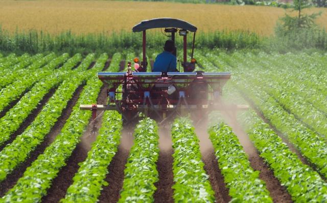 農業・水産業とSDGs